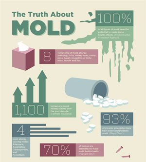 Basics about mold